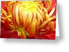 Flaming Greeting Card