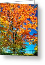 Flaming Maple - Paint Greeting Card