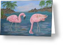Flamingo Cove Greeting Card