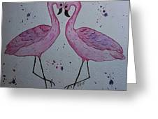 Flamingo Dance Greeting Card by Ginny Youngblood
