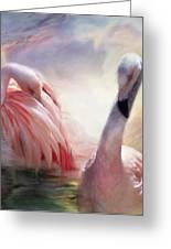 Flamingo Dawn Greeting Card