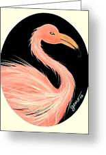 Flamingo Deco Greeting Card