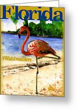 Flamingo In Florida Shirt Greeting Card