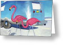 Flamingo Migration Greeting Card