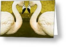 Flamingo Reflection Greeting Card