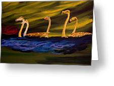 Flamingoes Swim African Birds Greeting Card
