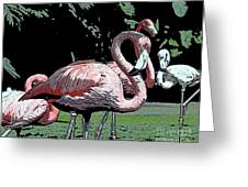 Flamingos I Greeting Card