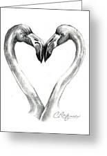 Flamingos In Love Greeting Card