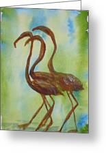 Flamingos In Vail Greeting Card