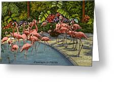 Flamingos Vintage Postcard Greeting Card