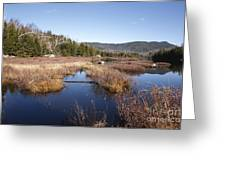 Flat Mountain Ponds - Sandwich Wilderness White Mountains Nh Greeting Card