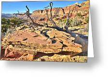 Flat Rock Along Scenic Drive Greeting Card
