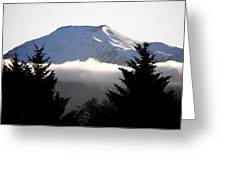 Flat Top Floating Through The Trees Greeting Card