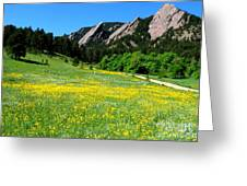 Flatirons And Yellow Meadow Greeting Card