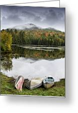 Flavor Of The Adirondacks Greeting Card by Brendan Reals