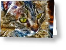 Fletcher Kitty Greeting Card by Marilyn Sholin