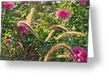 Fleurs Des Champs Greeting Card