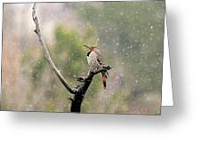 Flicker In The Rain Greeting Card