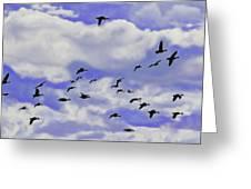 Flight Over Lake Greeting Card