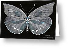 Flight Series 5 Silvery Moon Greeting Card