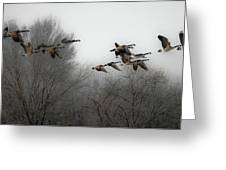 Flight To The Fields Greeting Card