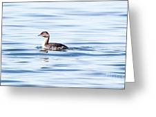 Float Grebe Greeting Card
