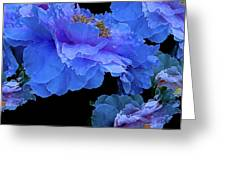 Floating Bouquet 10 Greeting Card