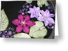 Floating Clematis Greeting Card