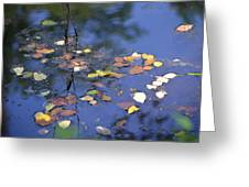 Floating Greeting Card