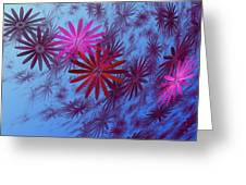 Floating Floral -003 Greeting Card