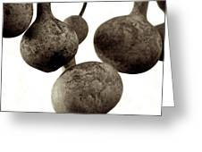 Floating Gourds Greeting Card