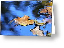 Floating On The Reflected Sky Greeting Card