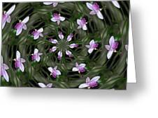 Floating Orchids Greeting Card