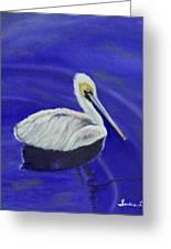 Floating Pelican Greeting Card