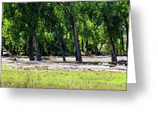 Flood Plain Greeting Card