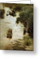 Flood Tide In The Salt Marsh Greeting Card