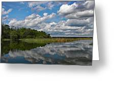 Flooded Low Country Rice Field Greeting Card