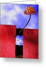 Flora And The Red Fence Greeting Card