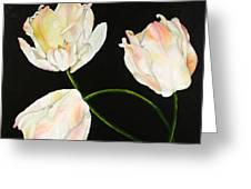 Flora Blanca 3  Greeting Card