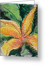 Flora Exotica 2 Greeting Card