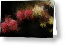 Flora Feathers Greeting Card
