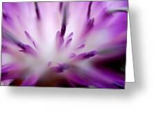 Florabundance 1 Greeting Card