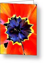 Floral 1229 Greeting Card