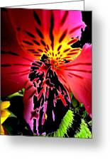 Floral 711 Greeting Card