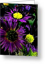 Floral 81 Greeting Card