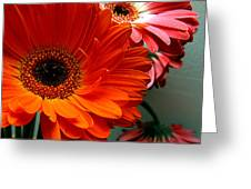 Floral Art Greeting Card