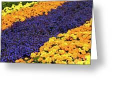 Floral Carpet Greeting Card