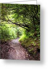 Floral Confetti On The Trail Greeting Card