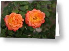 Floral Duo Greeting Card