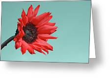 Floral Energy Greeting Card by Aimelle